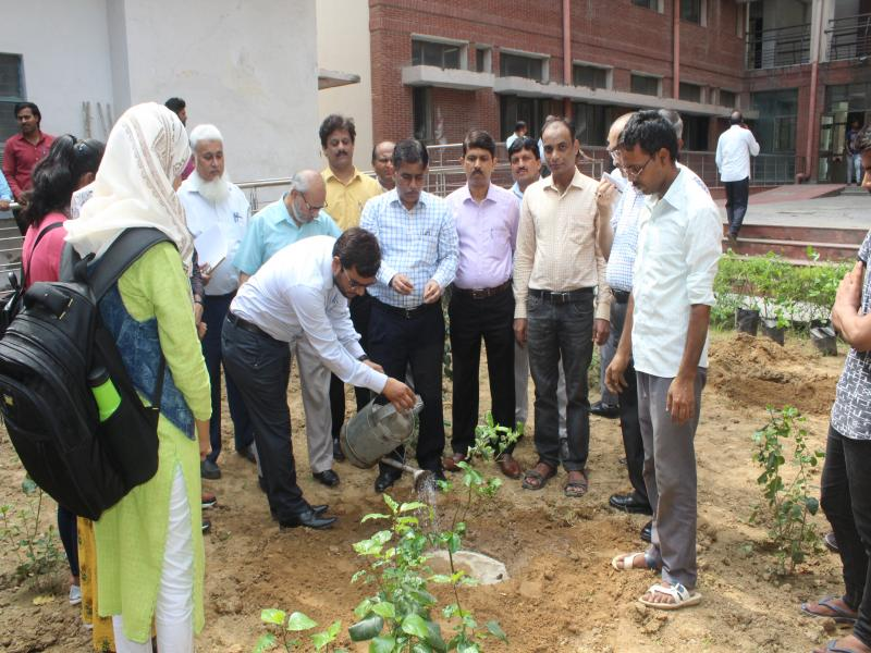 Jamia - Departments -University Polytechnic - Introduction